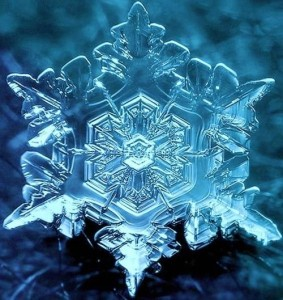 Water Crystal affected by Love - Masuru Emoto