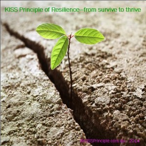 KISS Principle of Resilience - from survive to thrive
